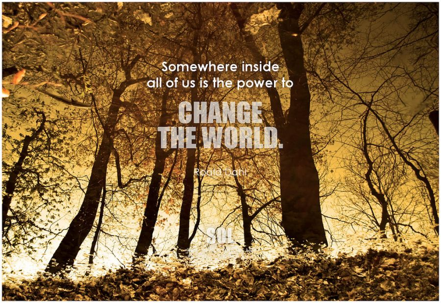 How to Change the World, by John-Paul Flintoff- areview