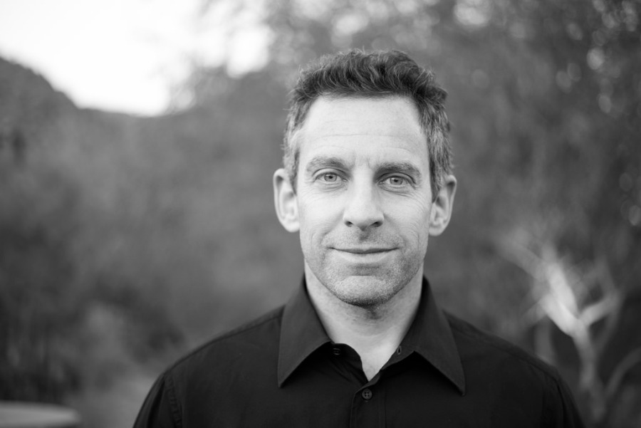 Sam Harris's Free Will, a review and evaluation
